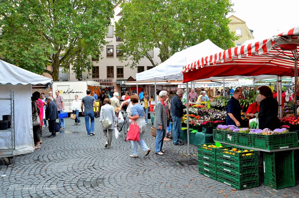 Market Stuttgart Bad Cannstatt
