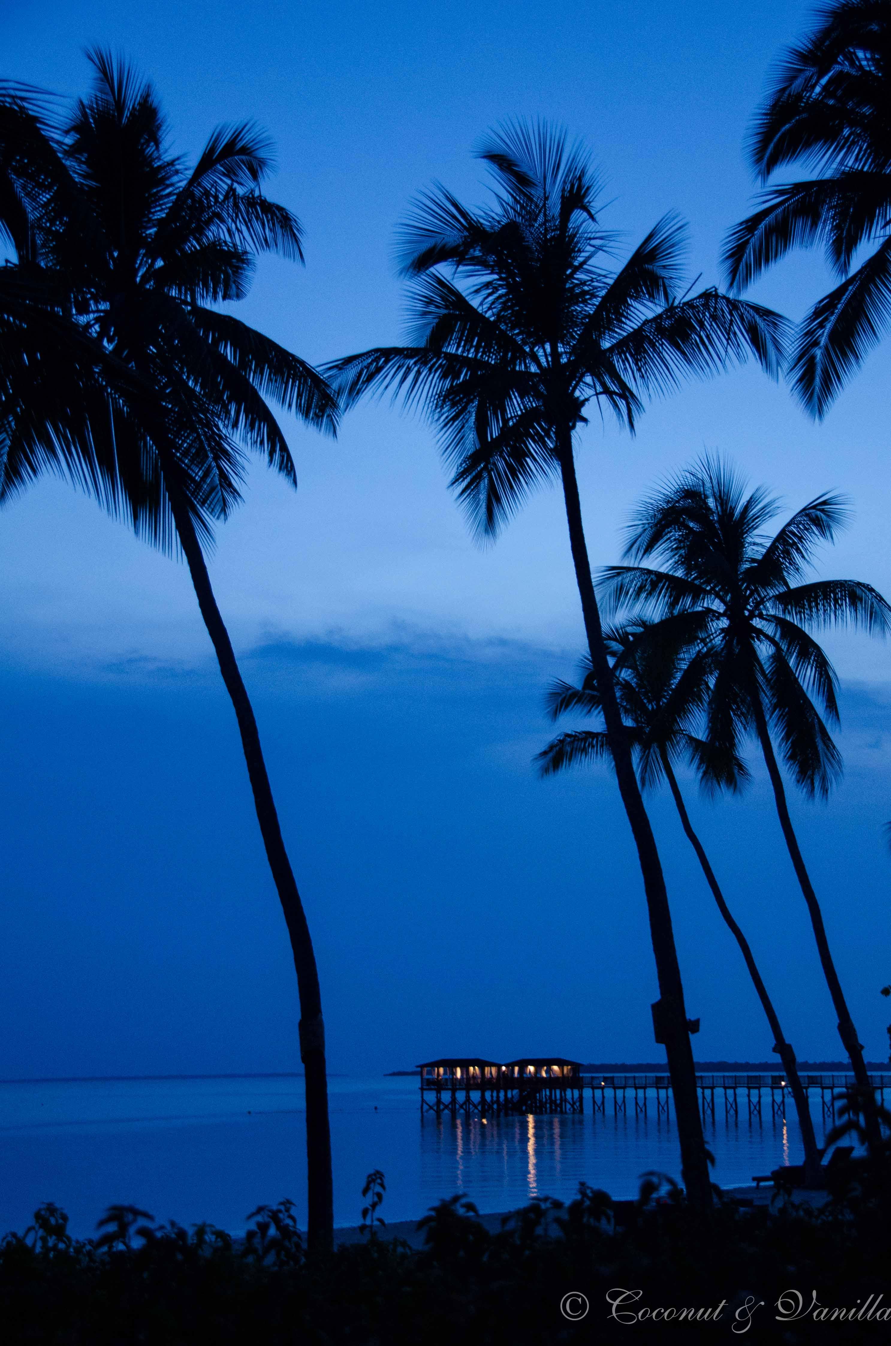 blauer Sonnenuntergang auf Sansibar