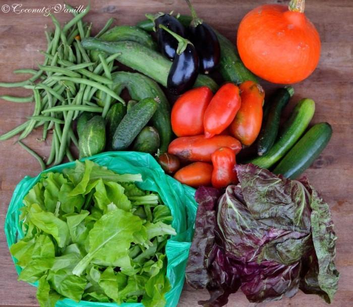 Market purchase & harvest 04.08.2012