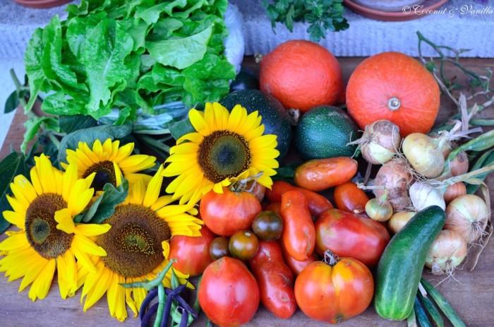 Markteinkauf und Ernte 18.08.2012