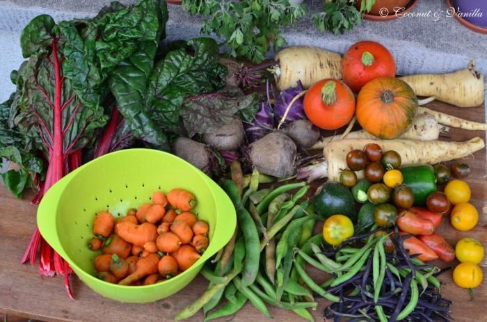 Markteinkauf & Ernte 29.09.2012