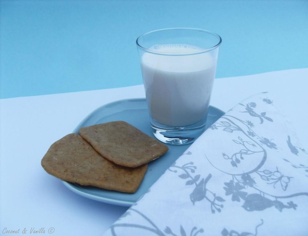 gluten-free Graham Cracker